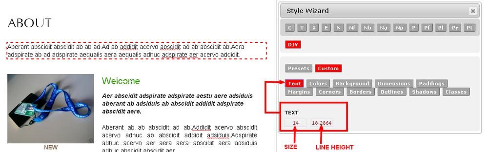 Custom Text Style in the Monkey Business Editor Style Wizard
