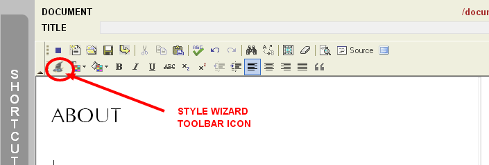 Style Wizard Toolbar Icon in the Monkey Business Editor