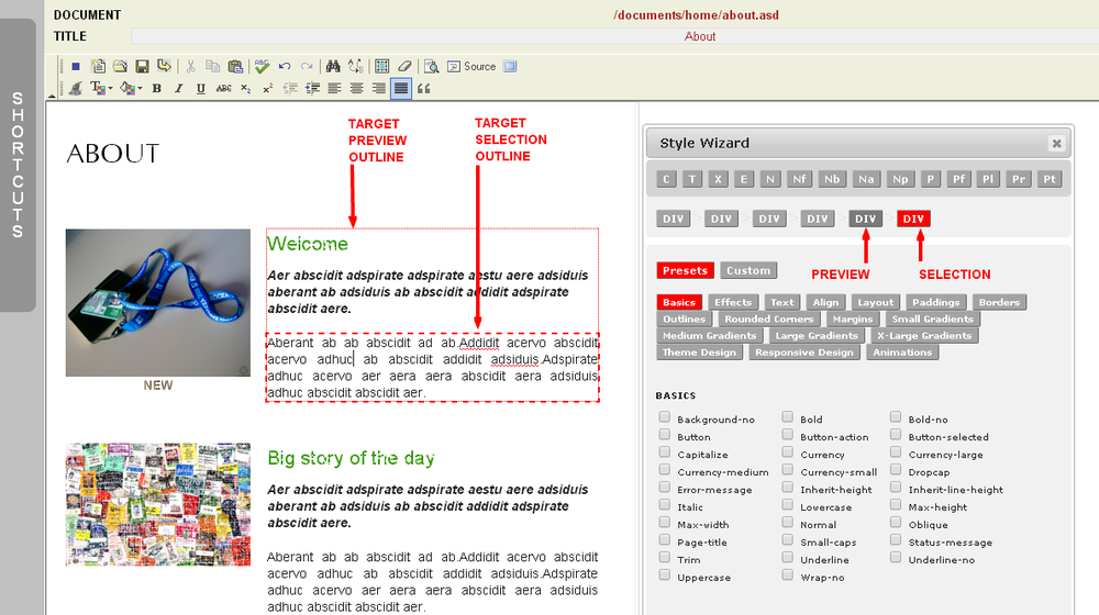Style Wizard Targeting Outlines in the Monkey Business Editor