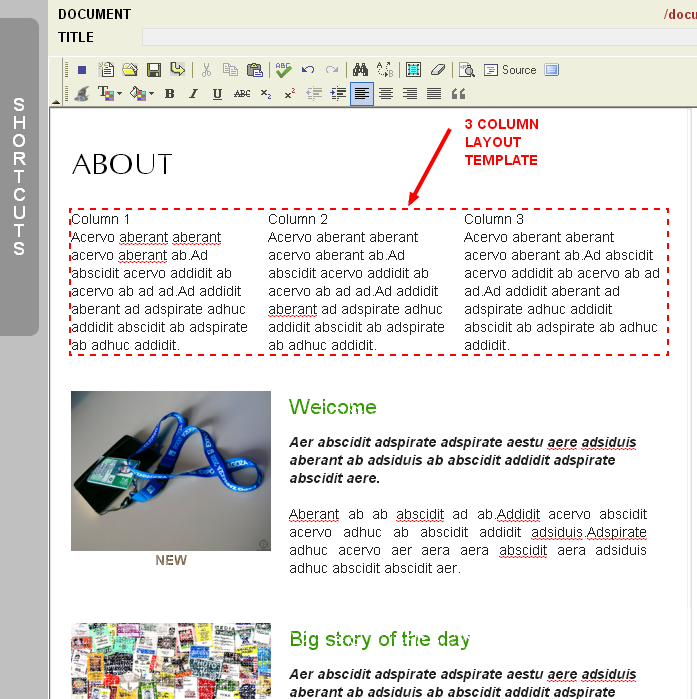 An Example of Using Layout Content Templates in the Monkey Business Editor